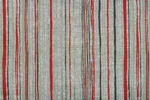 Leticia stripe 2009 Image