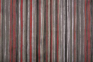Leticia stripe 2010 Image