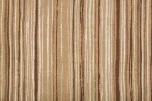 Leticia stripe 2014 Image
